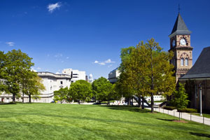 College campus and grass