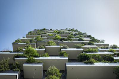 Building with green roof