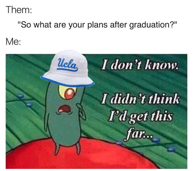 The Princeton Review Ranks* the Top 10 Memes for Chill Teens